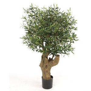 Oliventræ 140 cm (3.468 blade)