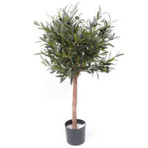 Oliventræ 75 cm