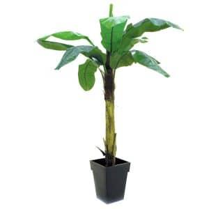 Bananpalme 220 cm med 9 blade